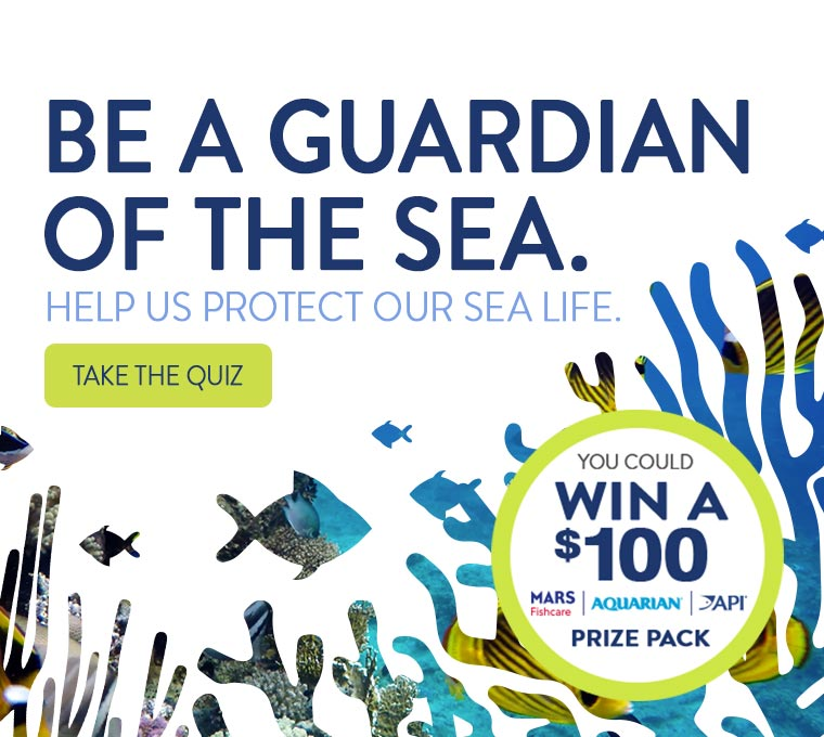 Be a Guardian of the Sea. Help us protect our sea life. You could win a $100 prize pack. Take the quiz